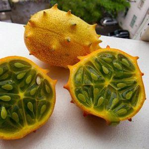 Cucumis metuliferus (zaden)